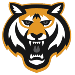 Name:  tucson_tigers_2013.png