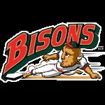 Name:  buffalo_bisons_1998-2008_eb2626_063d2b.png Views: 1325 Size:  19.3 KB