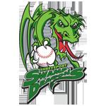 Name:  shreveport_swamp_dragons_2001-2002_84bd00_010101.png Views: 121 Size:  49.0 KB