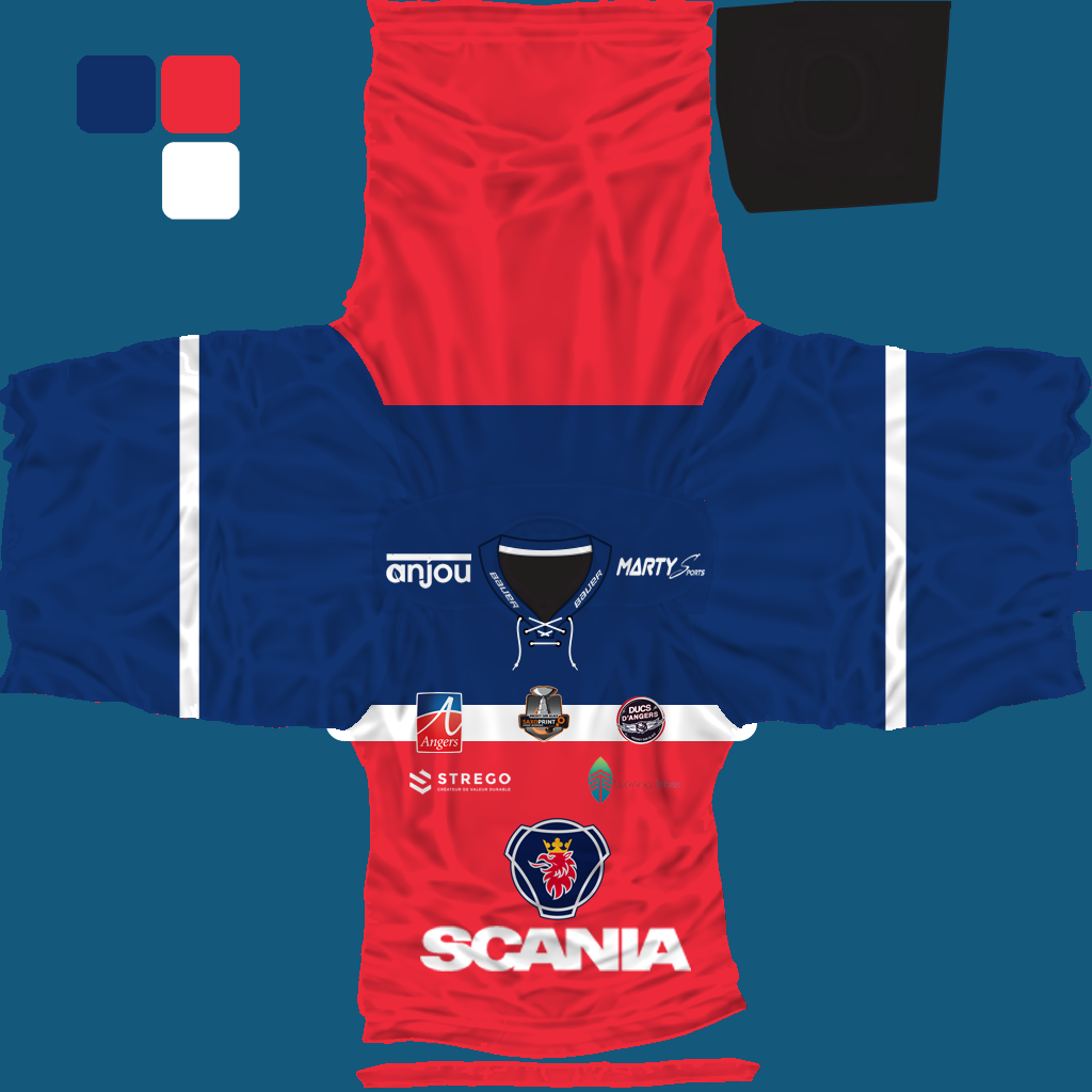 Name:  jersey_angers_ducs.png Views: 630 Size:  389.3 KB