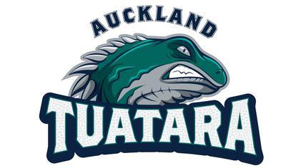Name:  auckland - Copy.jpg Views: 240 Size:  16.2 KB
