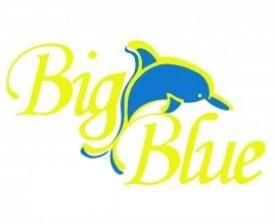 Name:  port vila big blue.jpg Views: 200 Size:  12.7 KB