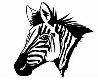 Name:  windhoek zebras.png Views: 159 Size:  59.2 KB