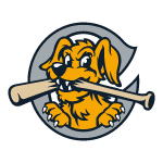 Name:  charleston_riverdogs_2005-2050_small_50.png