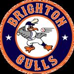 Name:  brighton_gulls_09004a_f06824.png Views: 210 Size:  41.1 KB