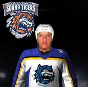 Name:  Bridgeport Sound Tigers Away.png Views: 300 Size:  40.3 KB