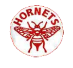 Name:  pittsburgh_hornets.png Views: 499 Size:  28.0 KB