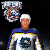 Name:  Bridgeport Sound Tigers Away.png
