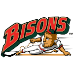 Name:  buffalo_bisons_1998-2008_eb2626_063d2b.png