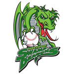 Name:  shreveport_swamp_dragons_2001-2002_84bd00_010101.png