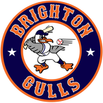 Name:  brighton_gulls_09004a_f06824.png