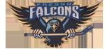 Name:  Fresno_Falcons_2010.png Views: 153 Size:  22.0 KB